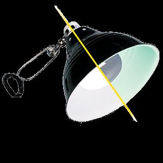 Picture for category osvětlení do terárií