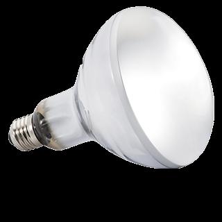 Picture for category zářivky, žárovky